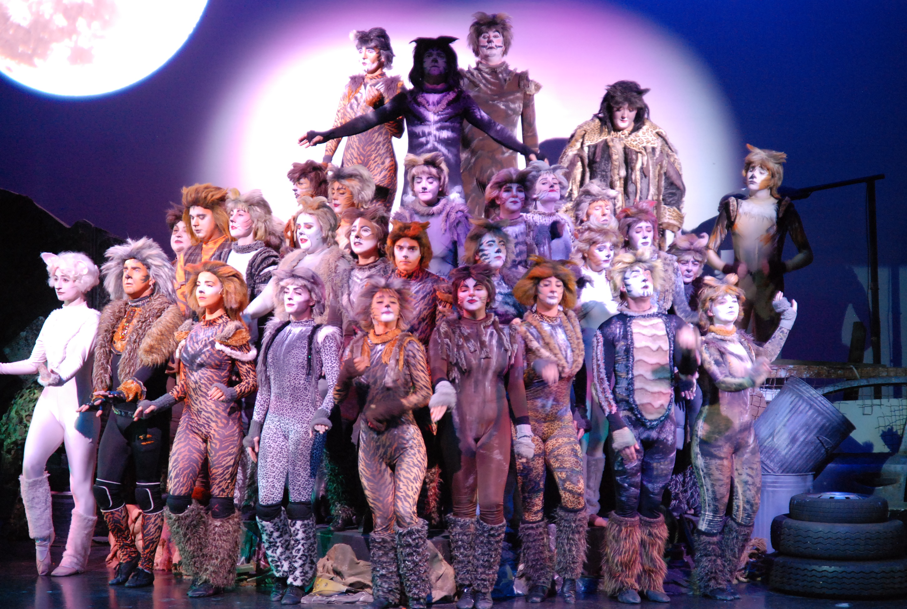 CATS performance picture